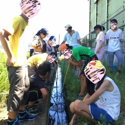 9月8日農業クラブ-落花生の収穫-小魚